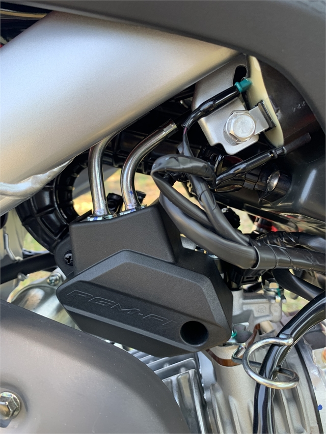2021 Honda CRF 110F at Powersports St. Augustine