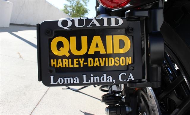 2020 Harley-Davidson Sportster Roadster at Quaid Harley-Davidson, Loma Linda, CA 92354