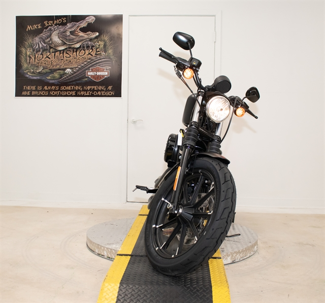2020 Harley-Davidson XL883N at Mike Bruno's Northshore Harley-Davidson