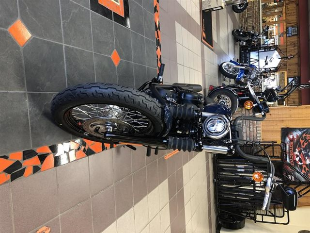2019 Harley-Davidson Softail Street Bob at High Plains Harley-Davidson, Clovis, NM 88101