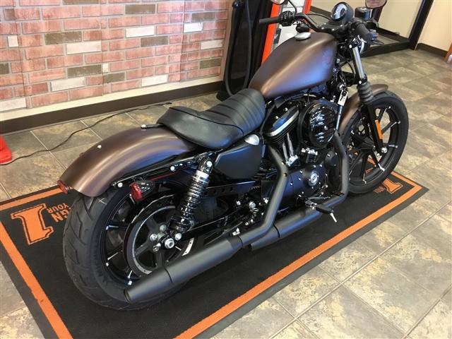 2019 Harley-Davidson Sportster 883 at Bud's Harley-Davidson, Evansville, IN 47715