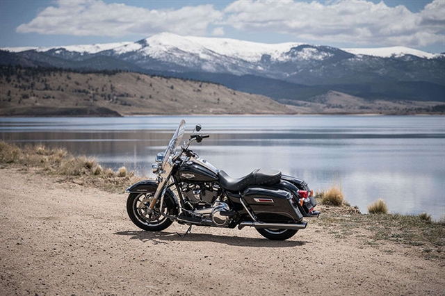 2019 Harley-Davidson Road King Base at Carlton Harley-Davidson®