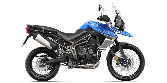 2019 Triumph Tiger 800 XCx at Youngblood Powersports RV Sales and Service