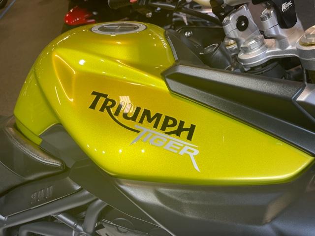 2012 Triumph Tiger 800 ABS at Martin Moto