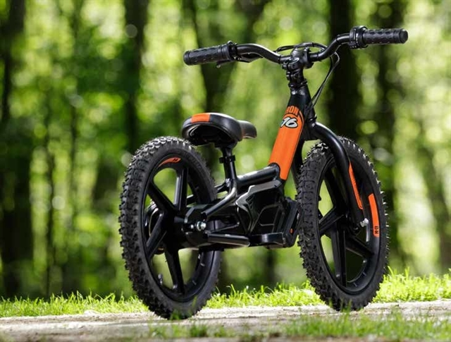2019 Harley-Davidson IRON-e 16 at Platte River Harley-Davidson