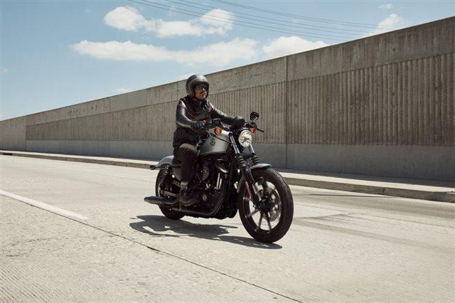 2020 Harley-Davidson Sportster Iron 883 at Zips 45th Parallel Harley-Davidson