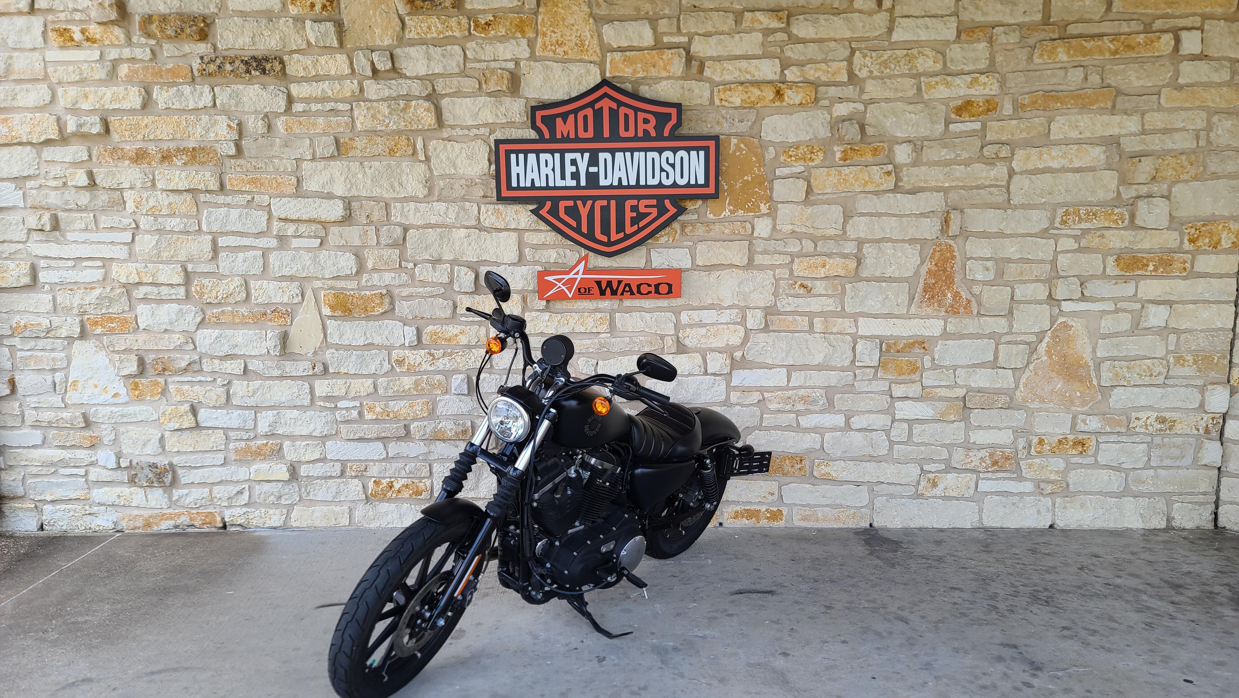 2019 Harley-Davidson Sportster Iron 883 at Harley-Davidson of Waco