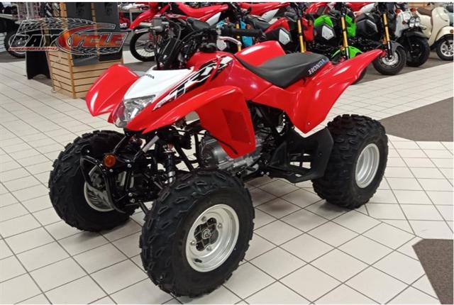 2019 Honda TRX 250X at Bay Cycle Sales