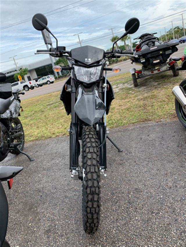 2019 Kawasaki KLX 250 at Jacksonville Powersports, Jacksonville, FL 32225