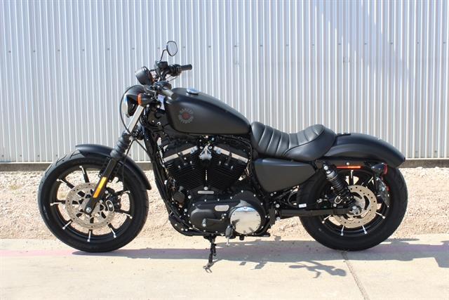 2019 Harley-Davidson Sportster Iron 883 at Gruene Harley-Davidson