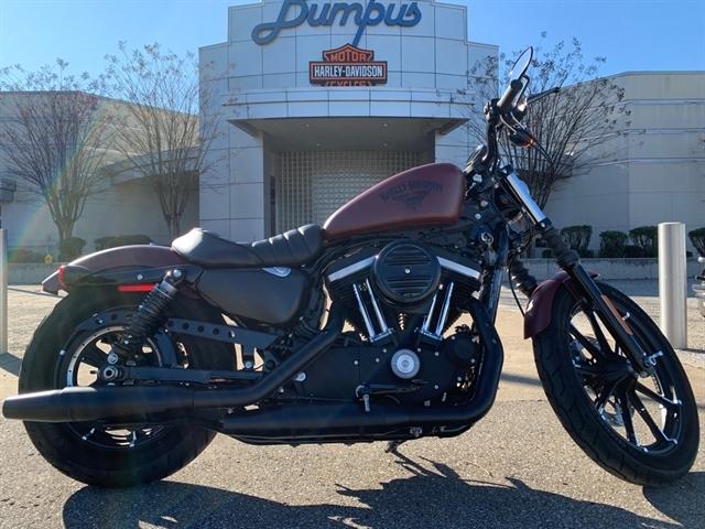 2017 Harley-Davidson Sportster Iron 883 at Bumpus H-D of Jackson