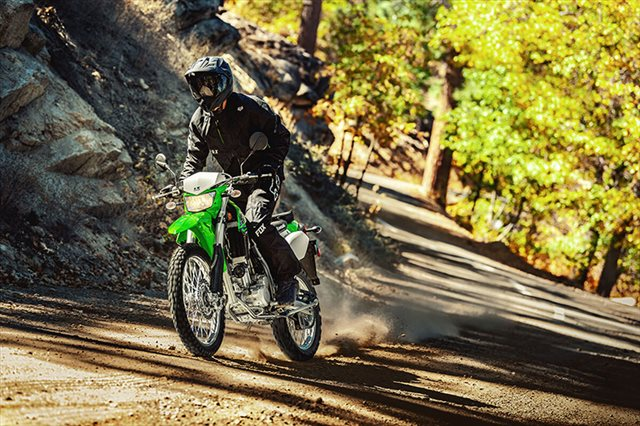 2021 Kawasaki KLX 300 at Extreme Powersports Inc