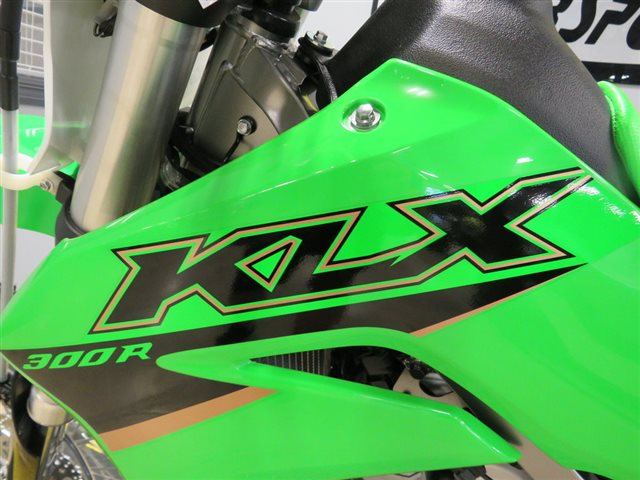 2022 Kawasaki KLX 300R at Sky Powersports Port Richey