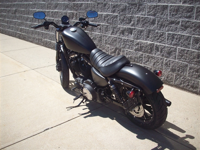 2019 Harley-Davidson Sportster Iron 883 at Indianapolis Southside Harley-Davidson®, Indianapolis, IN 46237