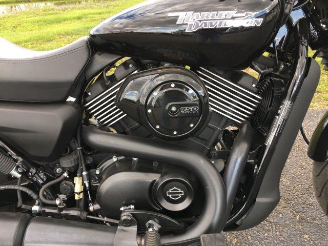 2017 Harley-Davidson Street 750 at Randy's Cycle, Marengo, IL 60152