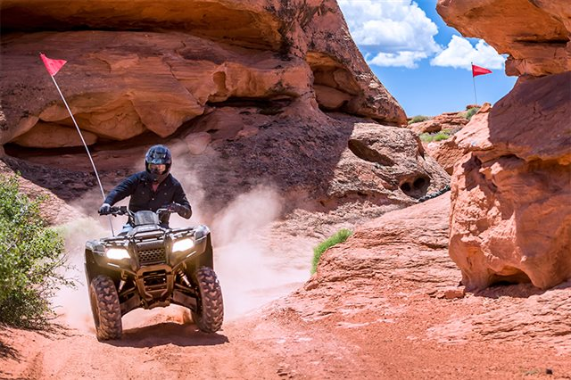 2021 Honda FourTrax Rancher 4X4 EPS at Extreme Powersports Inc