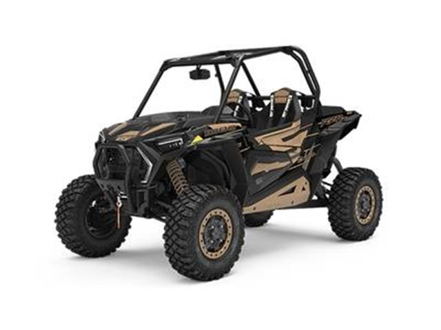 2019 Polaris RZR XP 1000 Trails and Rocks Edition at Got Gear Motorsports