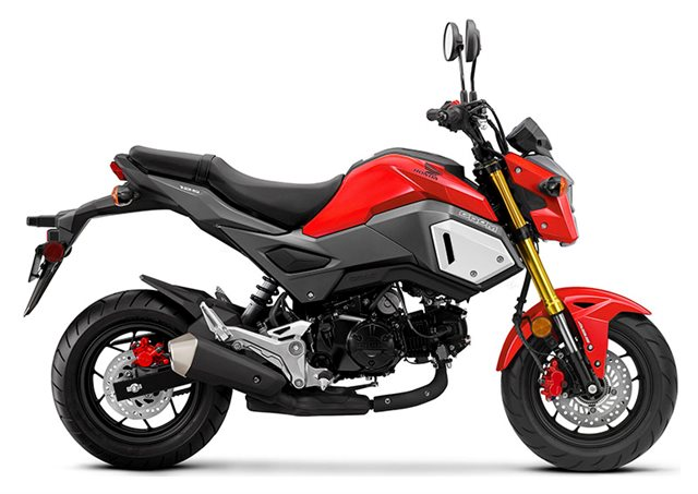2020 Honda Grom Base at Ehlerding Motorsports