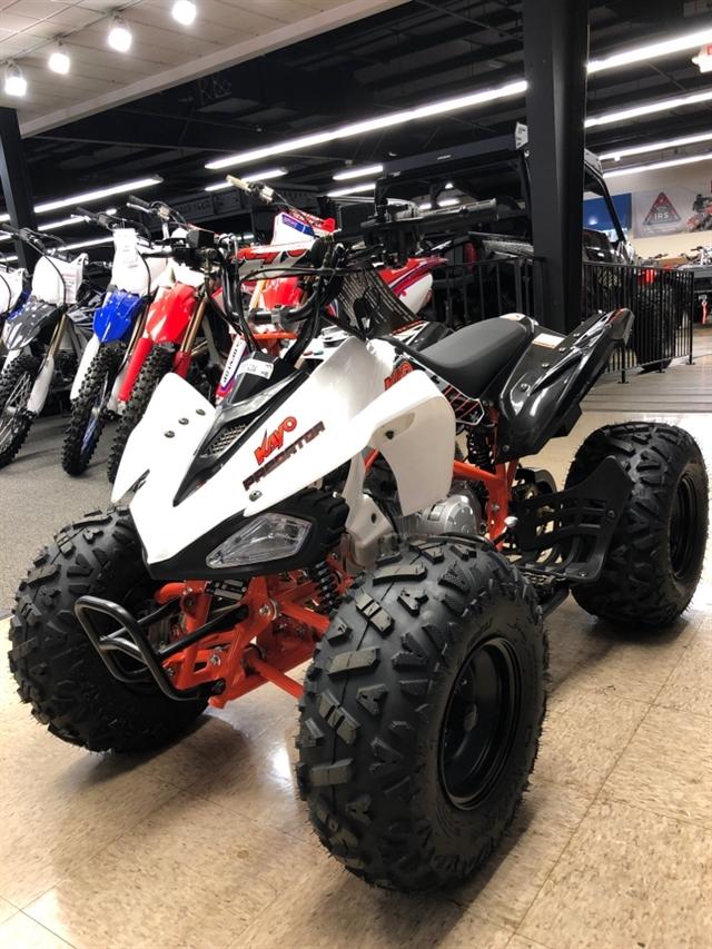 2019 KAYO USA, A & G Distributing PREDATOR 125 PREDATOR 125 at Sloans Motorcycle ATV, Murfreesboro, TN, 37129