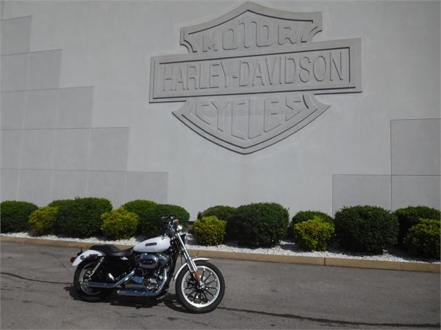 2008 Harley-Davidson XL1200L at Bumpus H-D of Murfreesboro