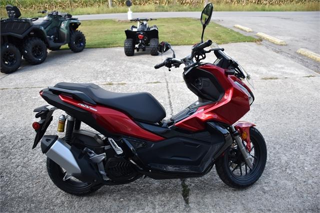 2022 Honda ADV 150 at Thornton's Motorcycle - Versailles, IN