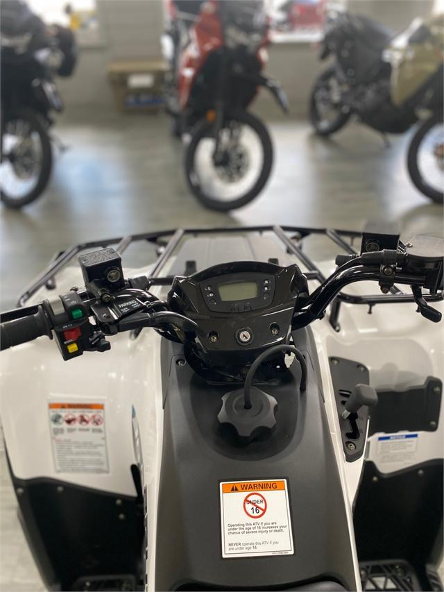 2022 Kawasaki Brute Force 300 at Jacksonville Powersports, Jacksonville, FL 32225