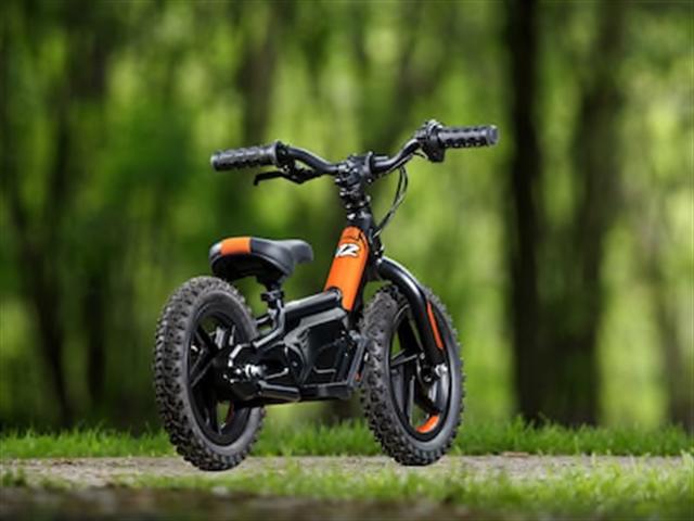 2019 Harley-Davidson IRON-e 12 at Platte River Harley-Davidson