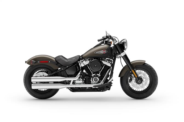 2021 Harley-Davidson Cruiser FLSL Softail Slim at Harley-Davidson of Macon