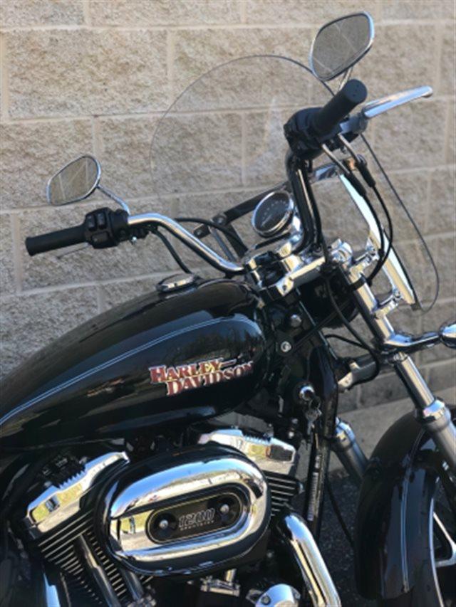 2014 Harley-Davidson Sportster SuperLow 1200T at Bluegrass Harley Davidson, Louisville, KY 40299
