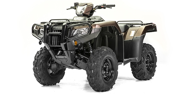 2020 Honda FourTrax Foreman Rubicon 4x4 EPS at Thornton's Motorcycle - Versailles, IN