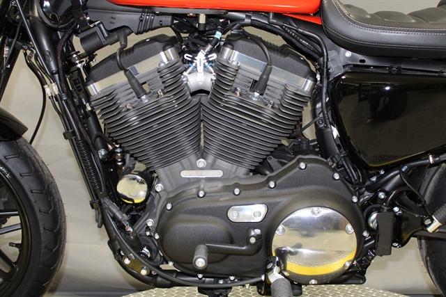 2020 Harley-Davidson Sportster Roadster at Platte River Harley-Davidson