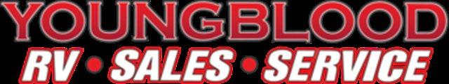 2020 Harley-Davidson Sportster Iron 883 at Youngblood RV & Powersports Springfield Missouri - Ozark MO