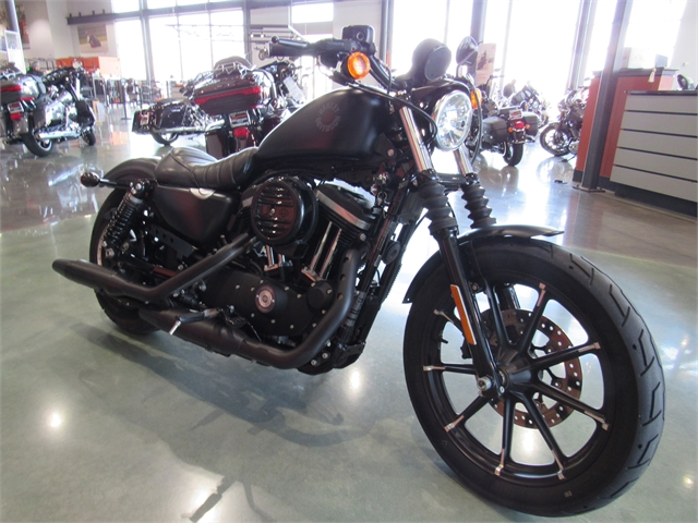 2021 Harley-Davidson Street XL 883N Iron 883 at Conrad's Harley-Davidson