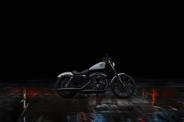 2020 Harley-Davidson Sportster Iron 883 at Zips 45th Parallel Harley-Davidson