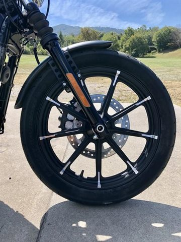 2020 Harley-Davidson XL883N - Sportster  Iron 883 at Harley-Davidson of Asheville