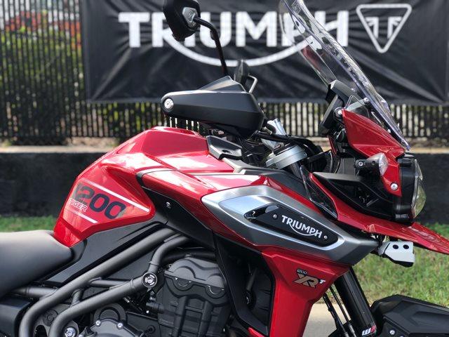 2018 Triumph Tiger 1200 XRT at Tampa Triumph, Tampa, FL 33614