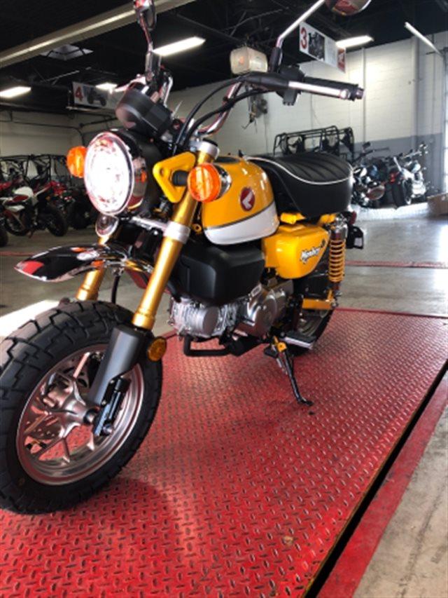 2019 Honda Monkey Base at Genthe Honda Powersports, Southgate, MI 48195
