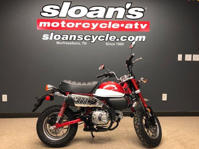 2019 Honda Monkey Base at Sloan's Motorcycle, Murfreesboro, TN, 37129