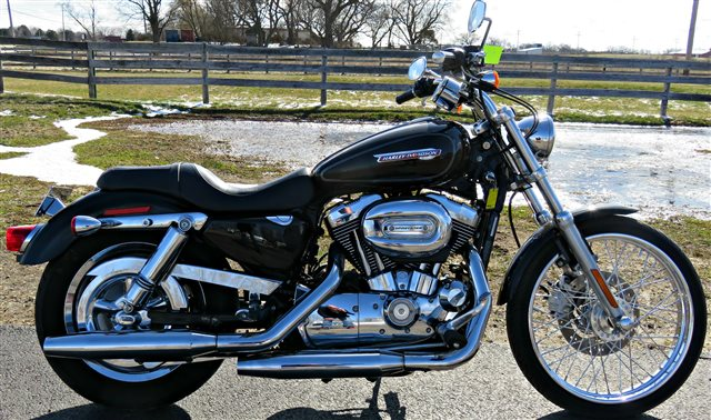 2008 Harley-Davidson Sportster 1200 Custom at Randy's Cycle, Marengo, IL 60152