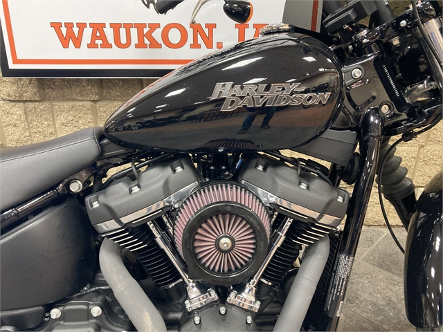 2019 Harley-Davidson Softail Street Bob at Iron Hill Harley-Davidson