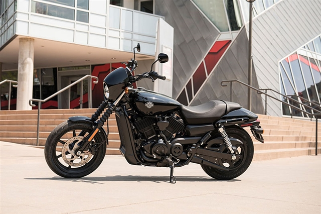 2019 Harley-Davidson Street 500 at Thunder Harley-Davidson