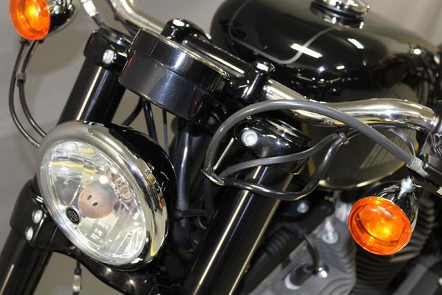 2018 Harley-Davidson Sportster Roadster at Platte River Harley-Davidson