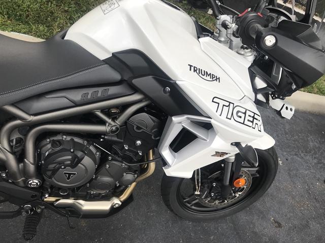 2019 Triumph Tiger 800 XRT at Tampa Triumph, Tampa, FL 33614