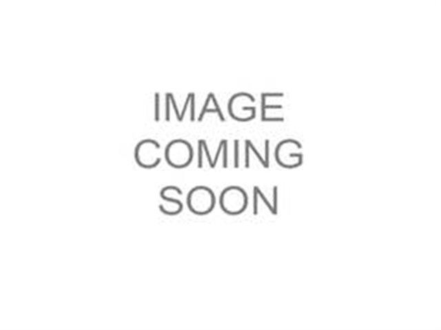 2020 Honda FourTrax Foreman 4x4 at Got Gear Motorsports