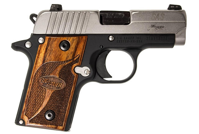 2019 Sig Sauer P238 at Harsh Outdoors, Eaton, CO 80615