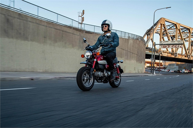 2021 Honda Monkey Base at Ride Center USA