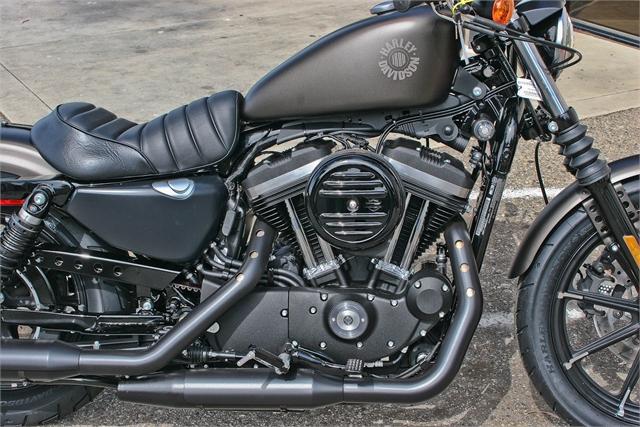 2021 Harley-Davidson Street XL 883N Iron 883 at Ventura Harley-Davidson