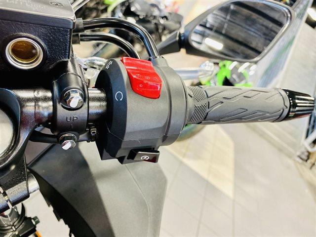2019 Suzuki GSX 250R at Rod's Ride On Powersports