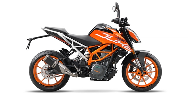2019 KTM Duke 390 at Hebeler Sales & Service, Lockport, NY 14094