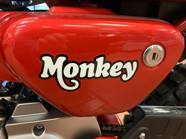 2019 Honda Monkey ABS at Mungenast Motorsports, St. Louis, MO 63123